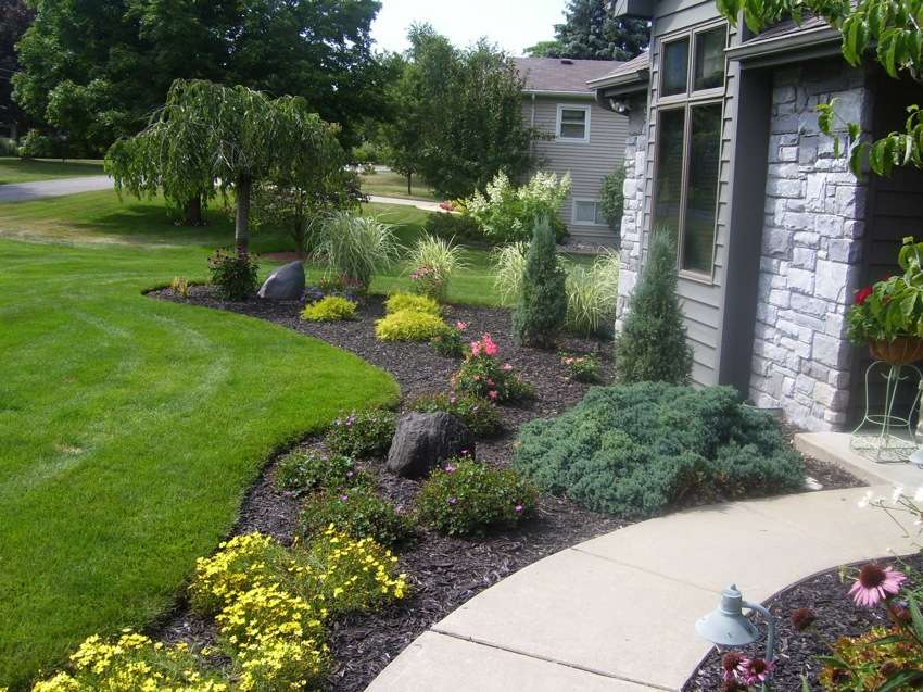 Plants that improve landscape and home security for House landscape